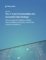The 11 Core Functionalities of a Successful Data Strategy
