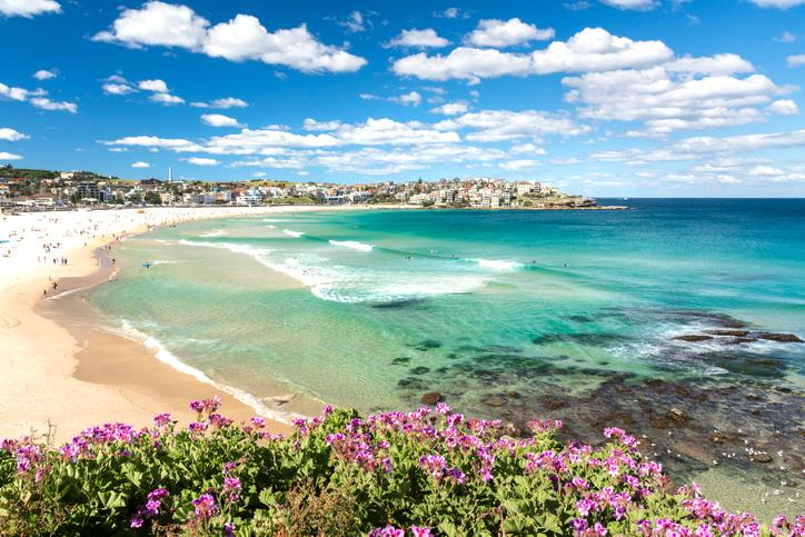 The driven data scientist - from an Australian beach to Bayesian analysis