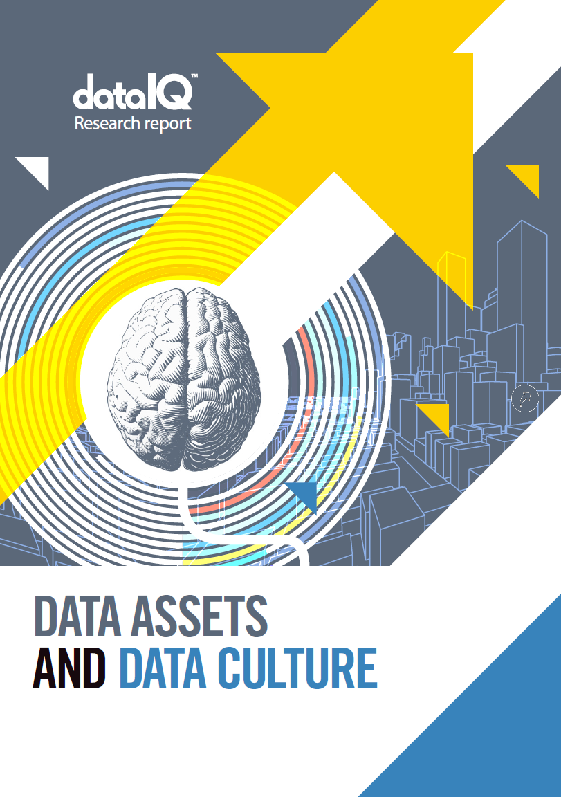 Data assets and data culture