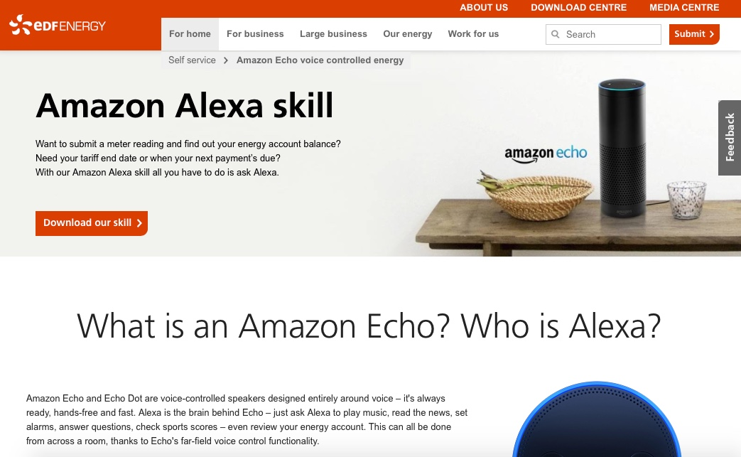 EDF Energy Amazon Alexa Skill